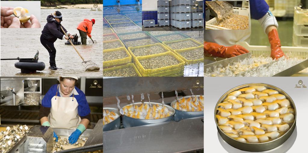 Ob Sardinen, Thunfisch, Pulpo oder Muscheln. Die Philosophie ist dieselbe. Qualität bei der Verarbeitung, Schritt für Schritt.