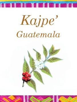 Kajpe_Front